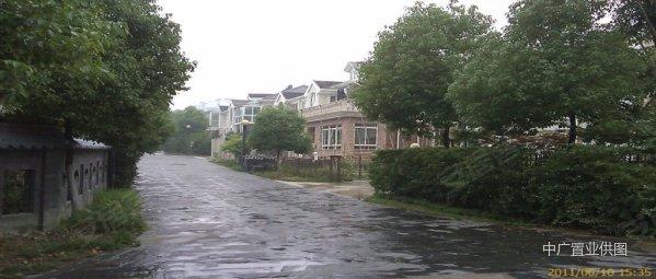 【小曼】专做上海别墅爱涛漪水园双拼别墅超多图别墅江宁的陆图片