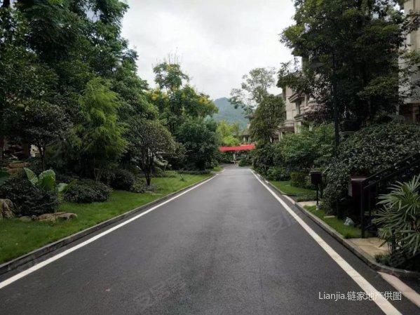 巴南区 东海定南山 大联排纯别墅 带双车位私家花园 实得率高