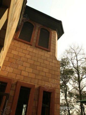 新房 天府二街 双流山顶上联排别墅 临江风景 安静优雅